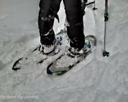 Yep, It's a Snowshoe Hike Alright