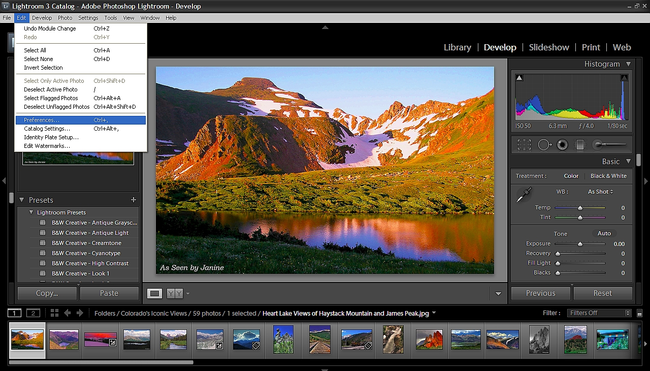 Topaz Fusion Express 2: Use Topaz Labs Plugins Directly from