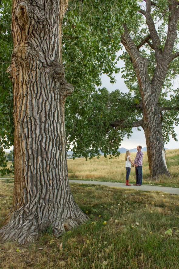 Eric and Steph Engagement Photo Under the Kissing Trees