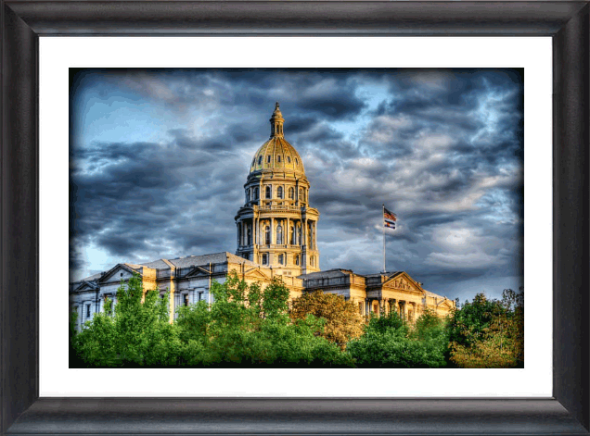 Matted Framed 20x30 inch print donated to Global Leadership Academy of Denver